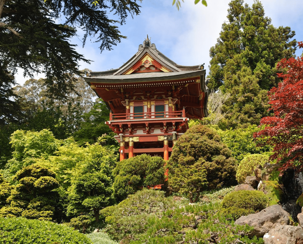 Three Golden Gate Park Gardens Are Now Free For Low Income Families