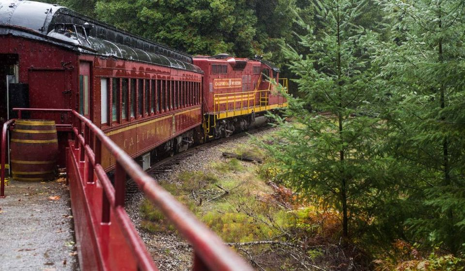Jingle Your Way Into The Holidays On A Magical Christmas Train Through The Redwood Forest