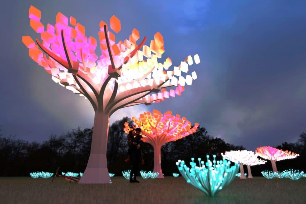 Golden Gate Park's Enchanting LED Light Display Has Been Extended Until April 4