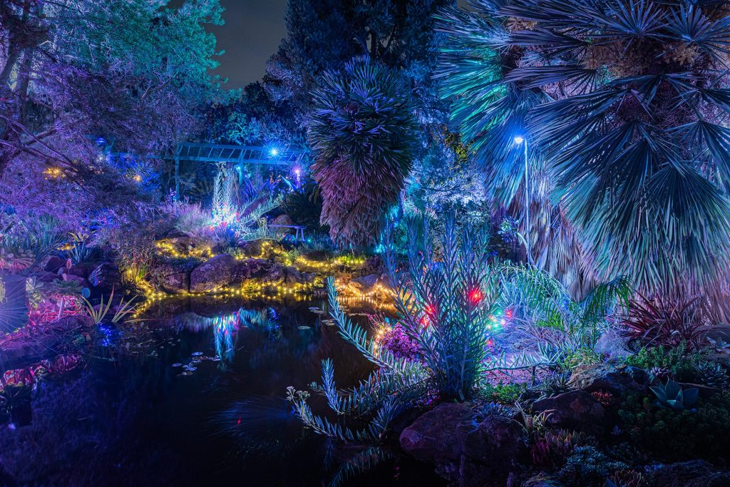 The Whimsical Garden Of D'Lights Has Been Extended Through Mid-January