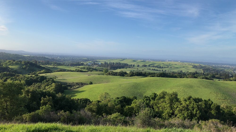 Foothills Park In Palo Alto Is Open To The Public For The First Time Since 1969