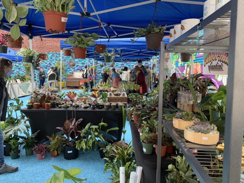 Don't Miss This Plant-Based Festival Happening In SoMa On Sunday