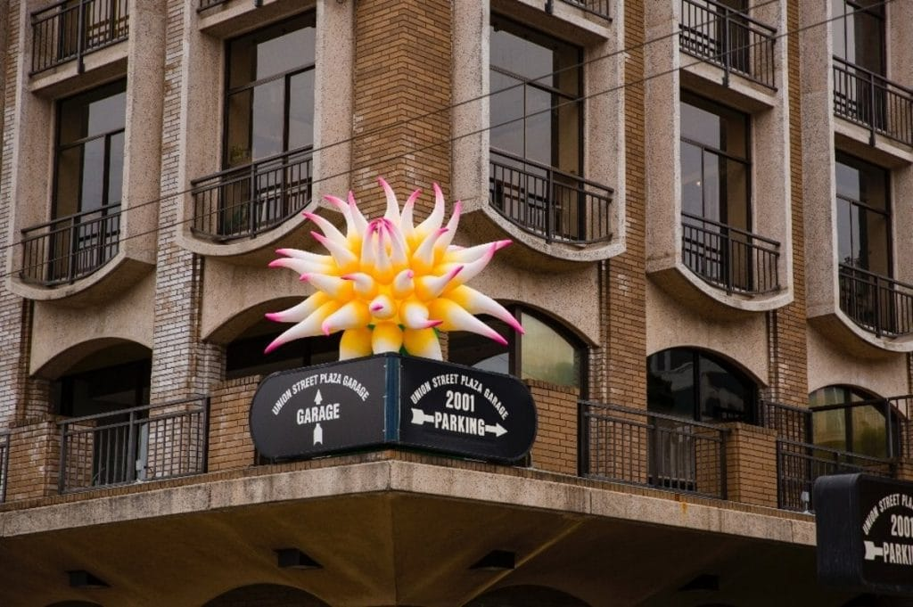 Here's Why Giant Inflatable Dahlias Are Blooming On Union Street