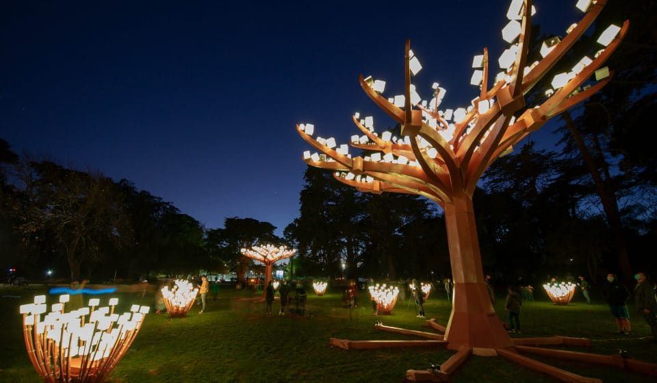 It's Back! The Enchanting 'Entwined Meadow' Light Display Will Return To Golden Gate Park In December