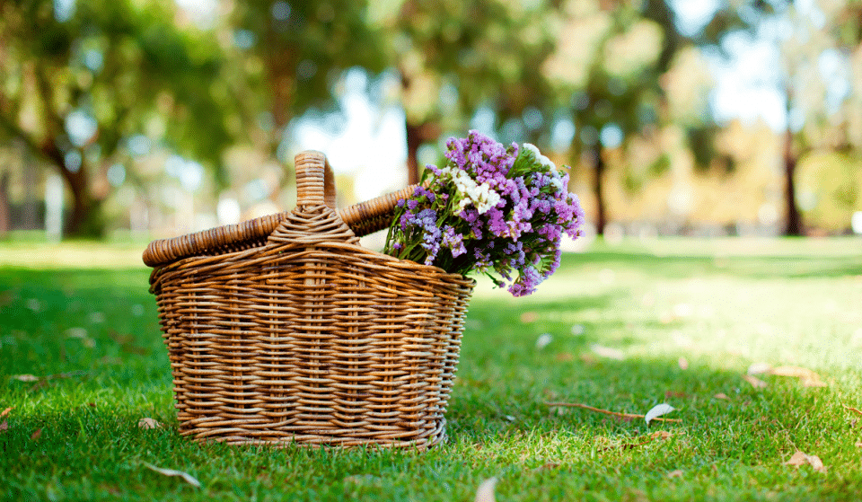 Celebrate Mother's Day With An Unforgettable Picnic At Seattle Center