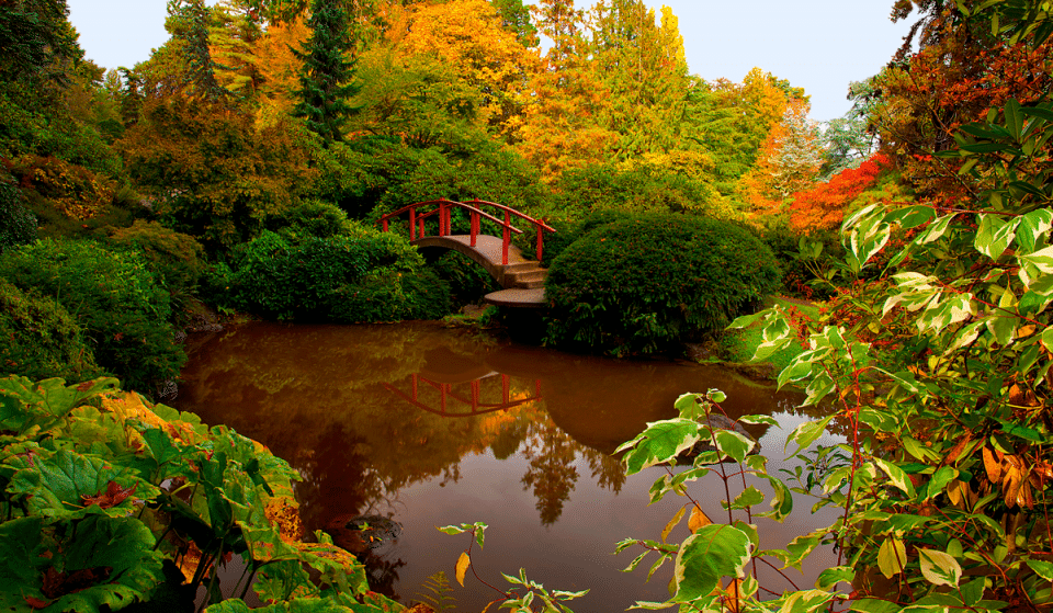 10 Stunning Seattle Parks That'll Make You Forget You're In The City