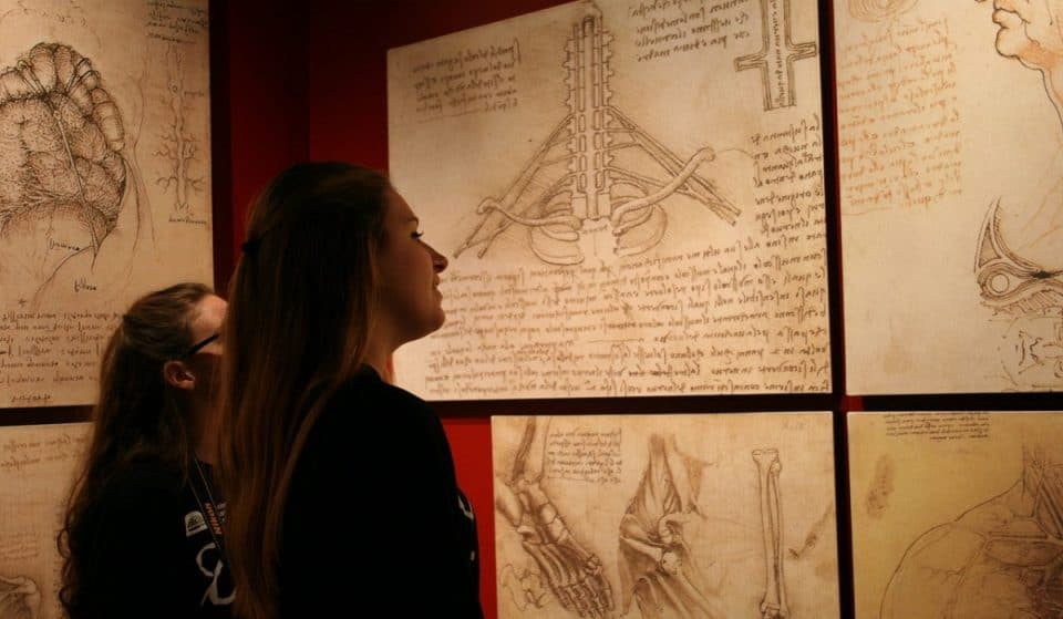 Take A Look Into Da Vinci's Inventions In This New Immersive Exhibit