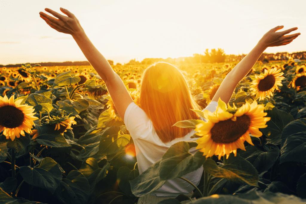 Sunflower festivals Seattle