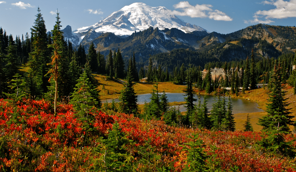 5 Gorgeous PNW Weekend Trips That Are Perfect For Fall