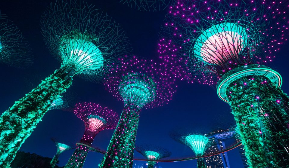 Free Light And Sound Show 'Garden Rhapsody' Returns To Gardens By The Bay On January 8