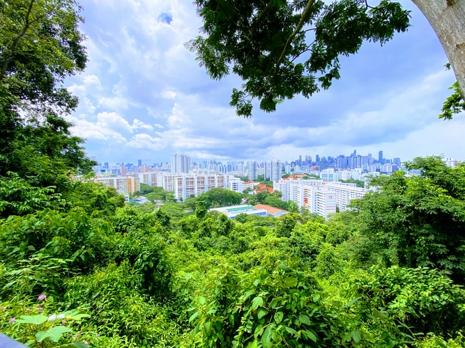 Singapore Green Plan Pledges To Triple Cycling Paths And Add 1,000ha More Green Spaces By 2030