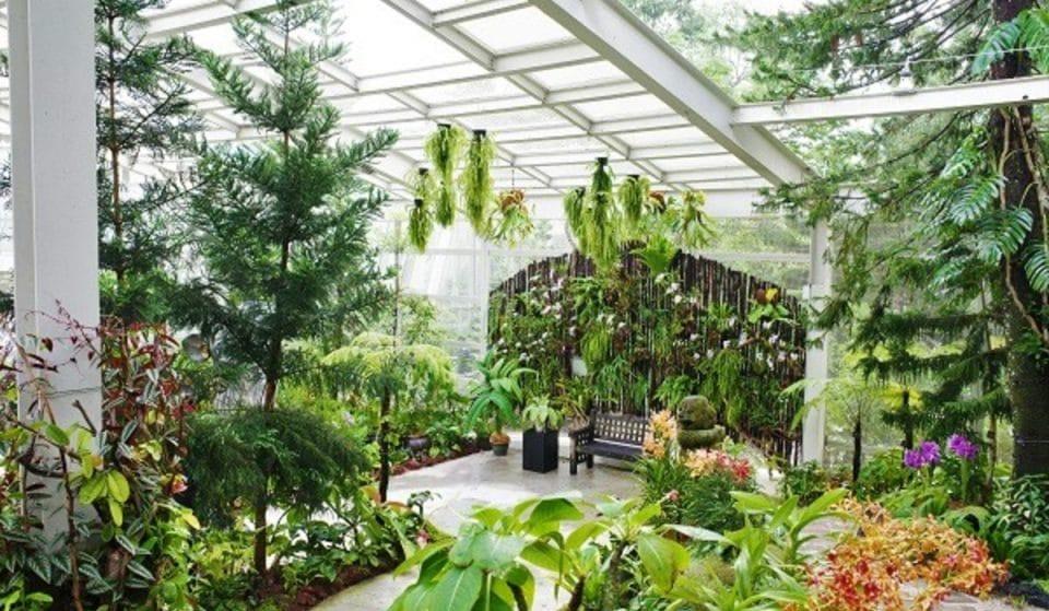 A New Insta-Worthy Botanical Glasshouse Has Opened In Singapore