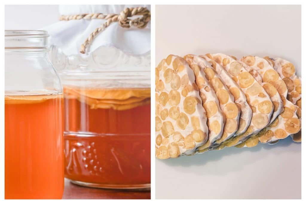 Try These Fermentation Workshops To Trust Your Gut And Live Your Best Life