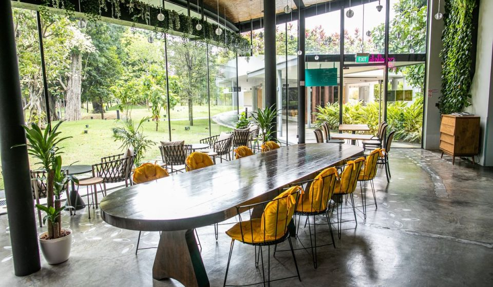 This New Pet-Friendly Gelato Glasshouse Café In Gardens By The Bay Is The Perfect Hangout