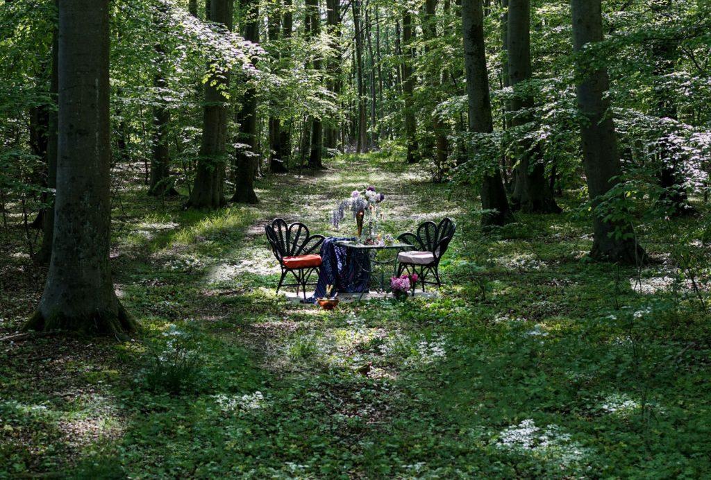 restaurant social distancing forest