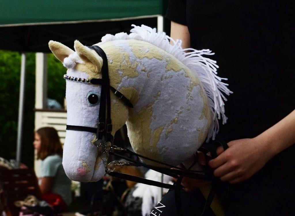 The Curious Scandinavian Craze Of Competitive Hobby Horse Riding