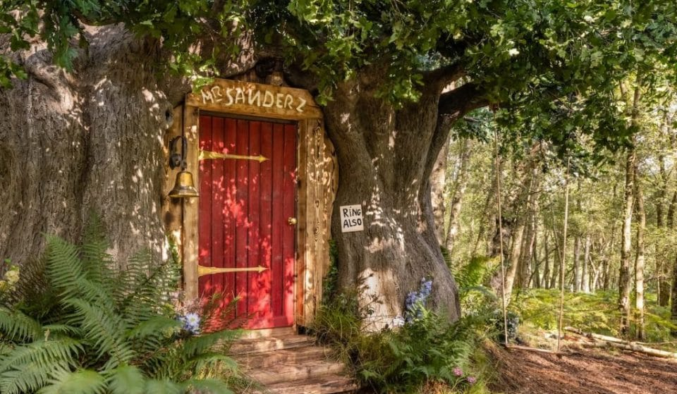 You Can Sleep At Winnie The Pooh's House In The Hundred Acre Wood