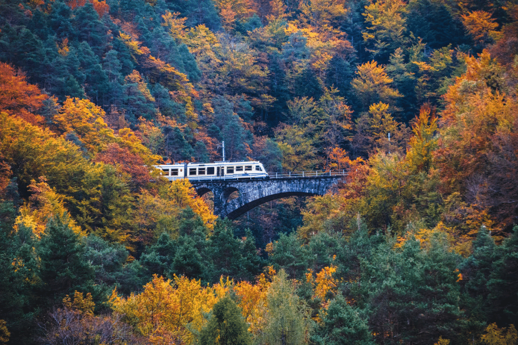 This European 'Foliage Train' Provides The Perfect Autumn Escape