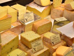 Käse verlängert das Leben, so eine Studie