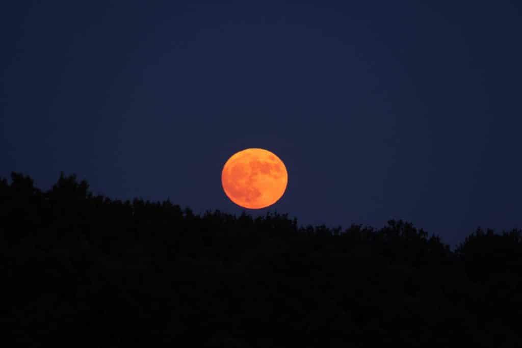 Nächste Woche wird der Jägermond am Herbsthimmel leuchten