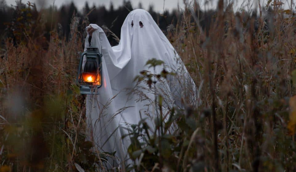 8 originelle Halloween-Kostümideen