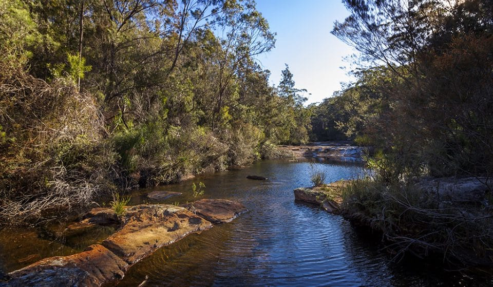 All The Breathtaking National Parks You Have To Visit Near Sydney (And By Near, We Mean Within 150 kms)