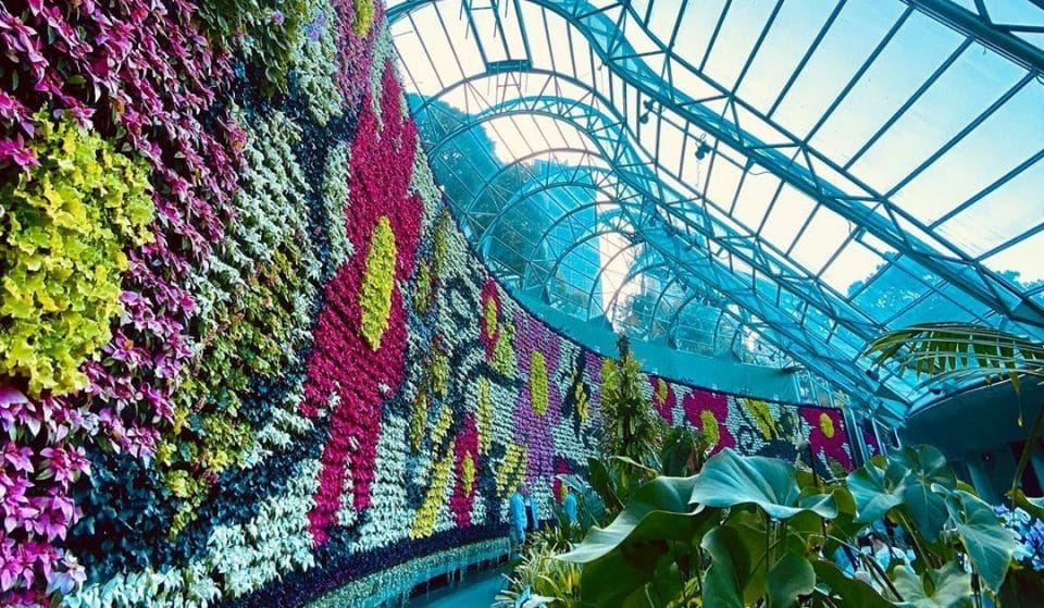 Marvel At 20,000 Blooming Flowers In The Heart Of Sydney