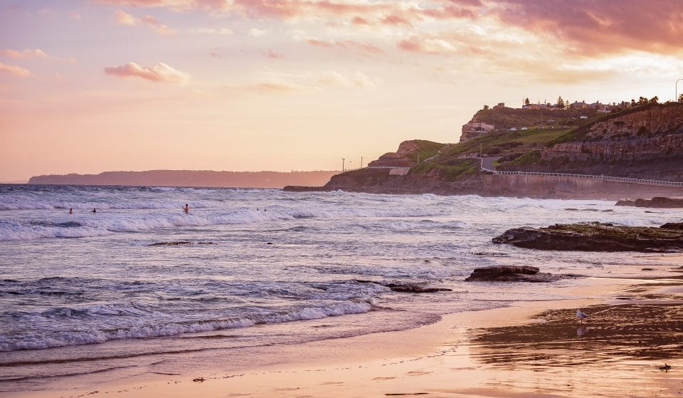 5 Fantastic Day Trips From Sydney You Can Take Using Public Transport