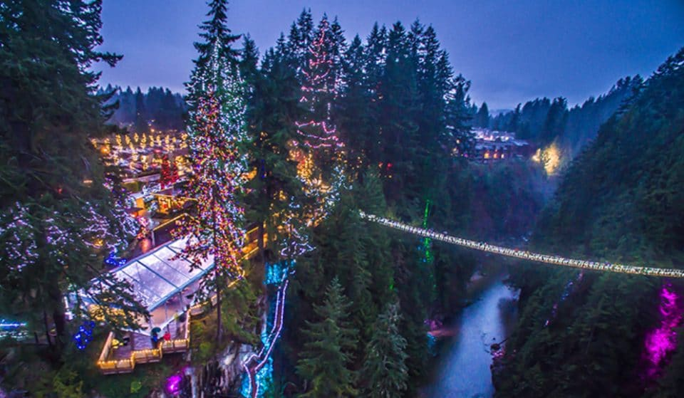 World's Tallest Christmas Trees Will Be At Capilano's Canyon Lights This Holiday Season