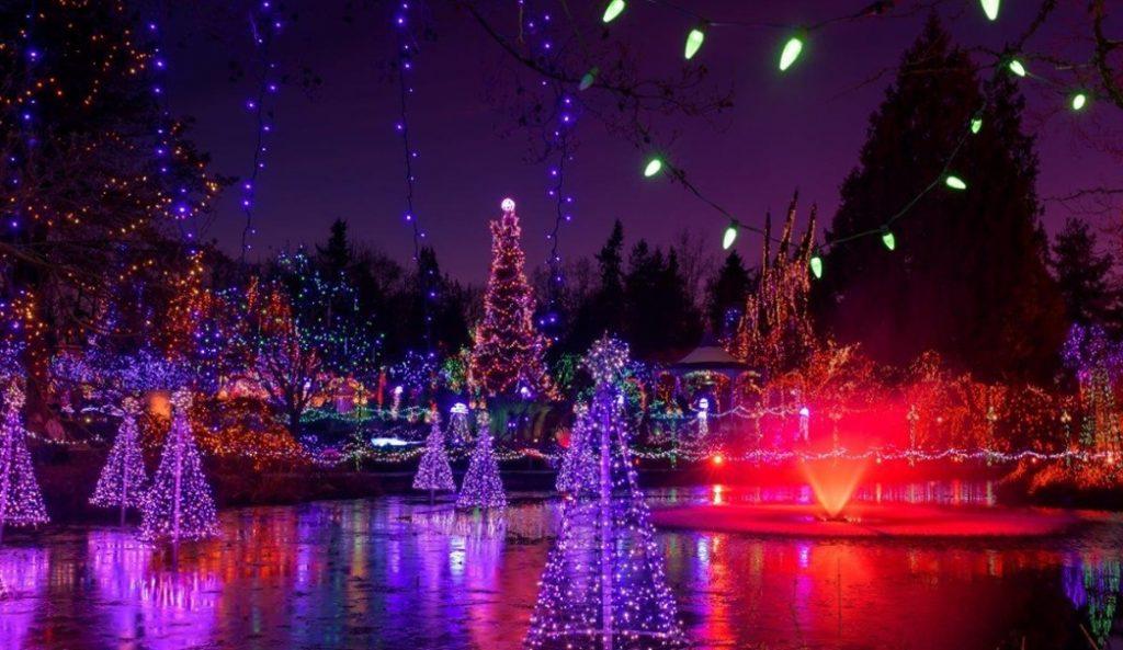 Stroll Past Over 1 Million Sparkling Lights At VanDusen Botanical Garden's Festival Of Lights