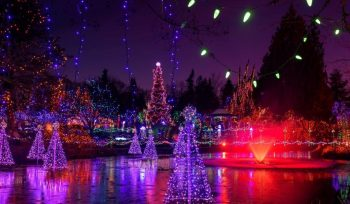Stroll Past Over 1 Million Sparkling Lights At VanDusen Botanical Garden's Festival Of Lights