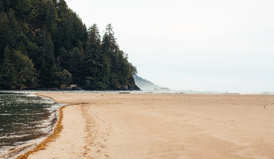 These Vancouver Island Beaches Will Make You Wanna Hop On A Ferry Right Now