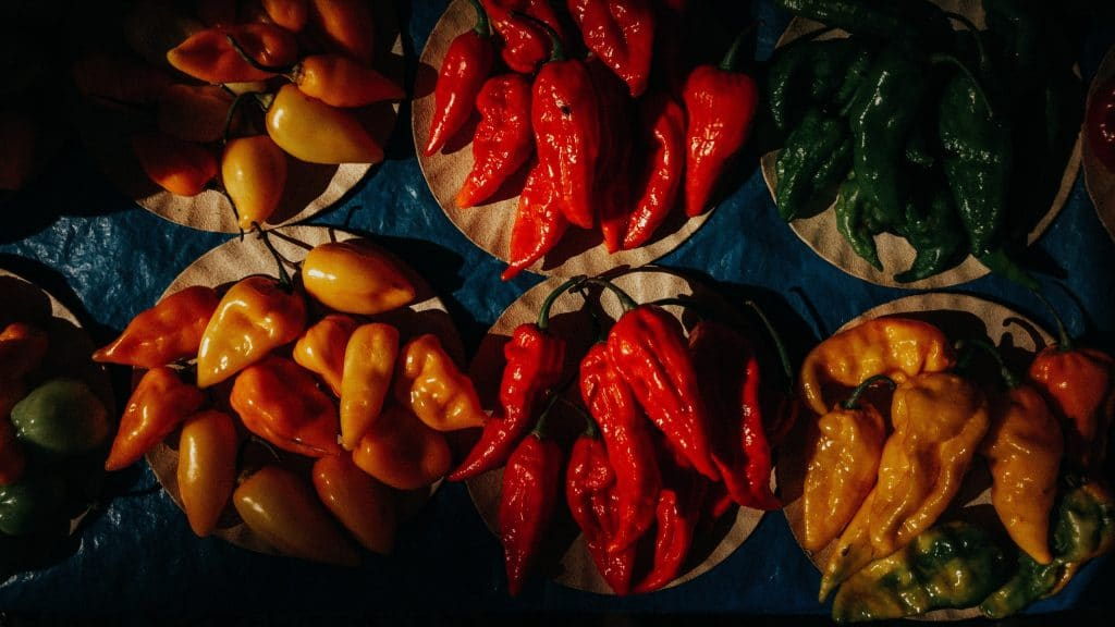Have You Been To This Insane Hot Sauce Tasting Bar In Kits Yet?