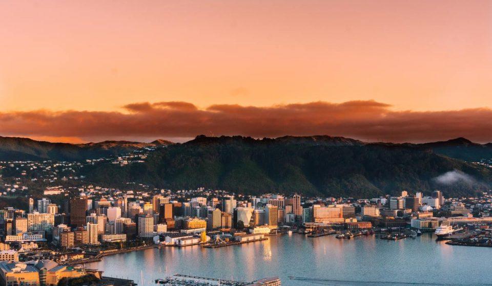 8 Of The Best Winter 2021 Activities To Do In Wellington