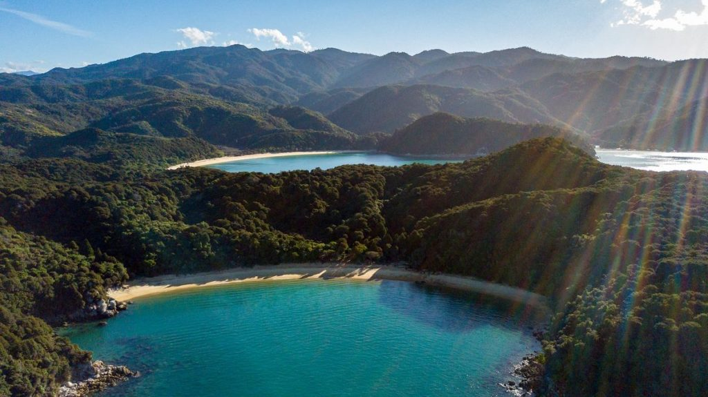 Day Trips From Wellington