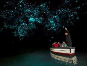 7 Exciting North Island Experiences To Beat The Winter Blues