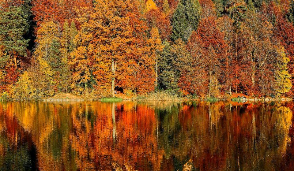 4 Urlaubstipps für den goldenen Herbst in der Schweiz