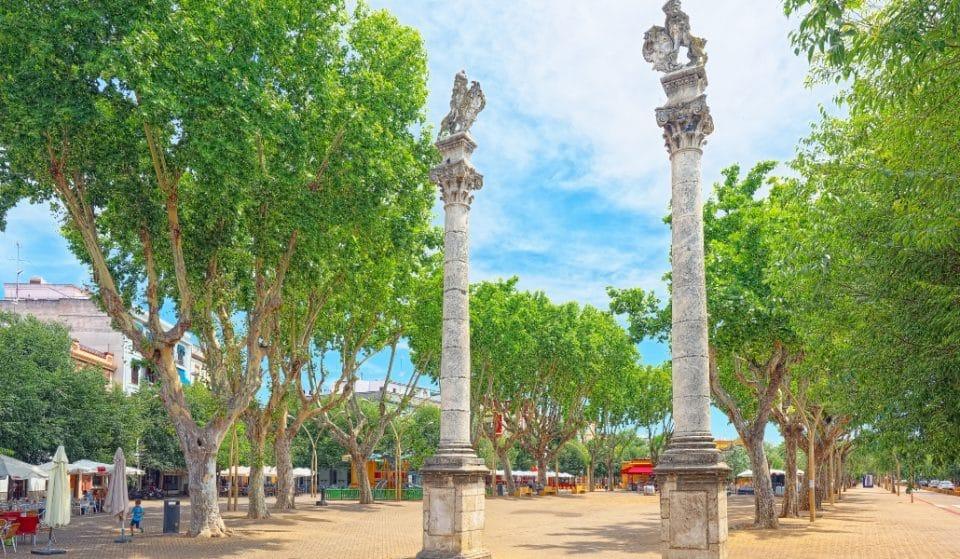 10 cosas que sólo pasan en la Alameda de Hércules