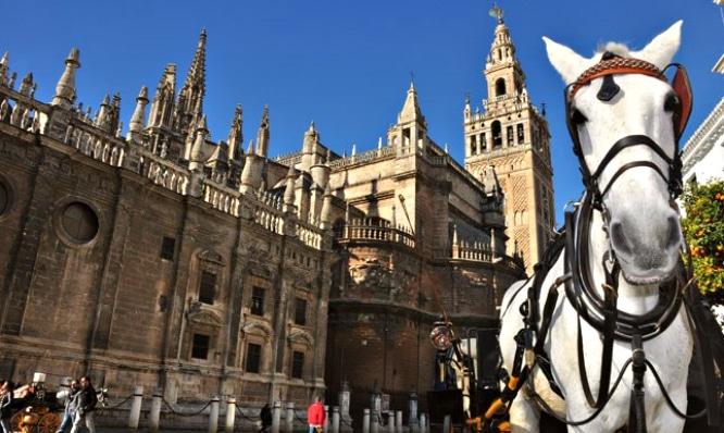Test: 10 cosas que solo sabrás si has vivido en Sevilla