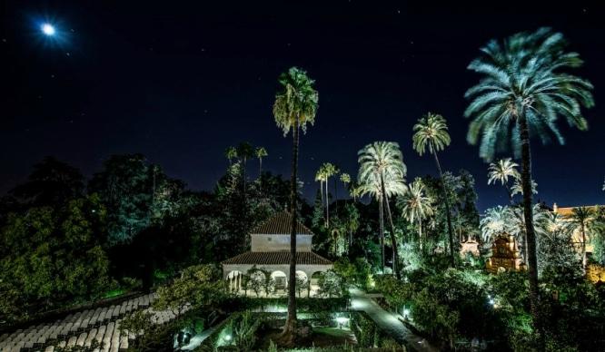 10 imágenes del Alcázar de Sevilla de noche