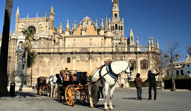 Los coches de caballos en Sevilla podrían llegar a su fin