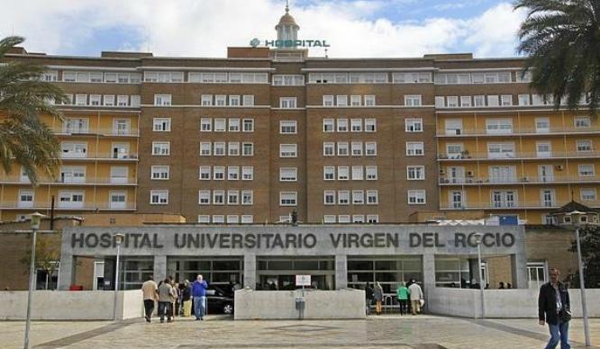 Sevilla tiene récord en donación de órganos y tejidos