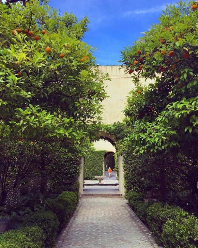 Real Alcazar Jardin
