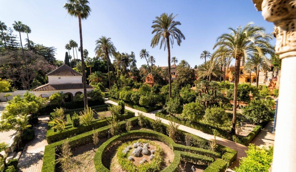 Vuelven las Noches del Alcázar, un viaje musical en el mejor de los jardines
