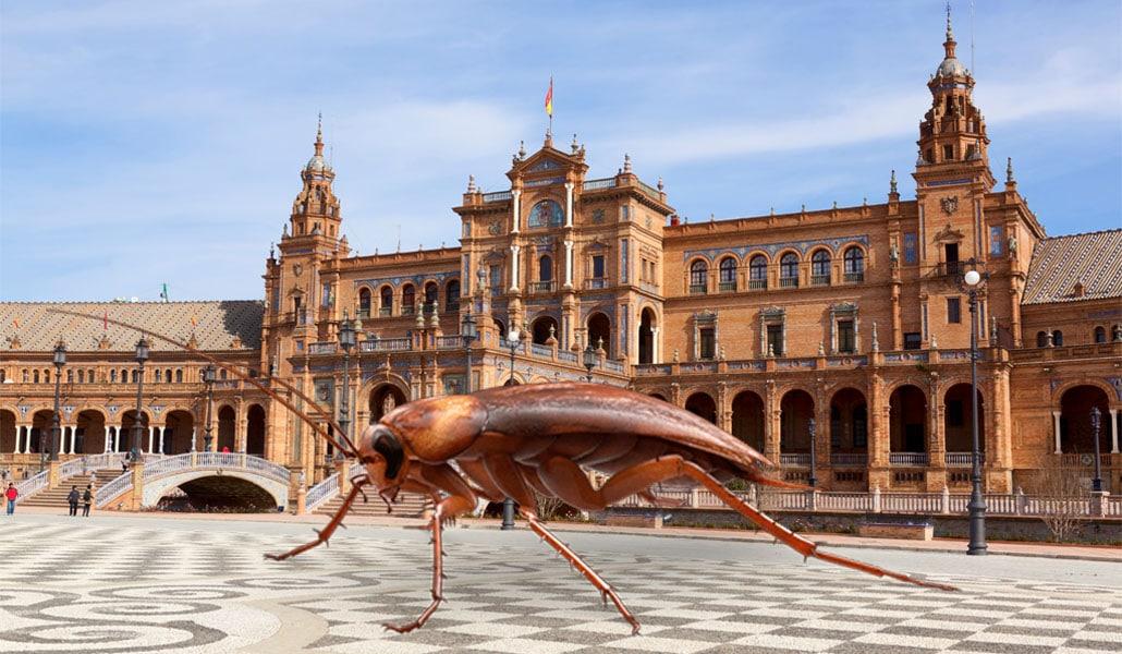 10 Situaciones que has vivido con las cucarachas en Sevilla