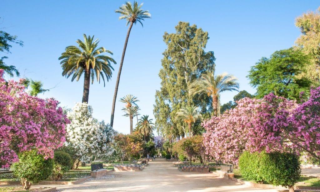 Un paseo histórico por los Jardines de Murillo