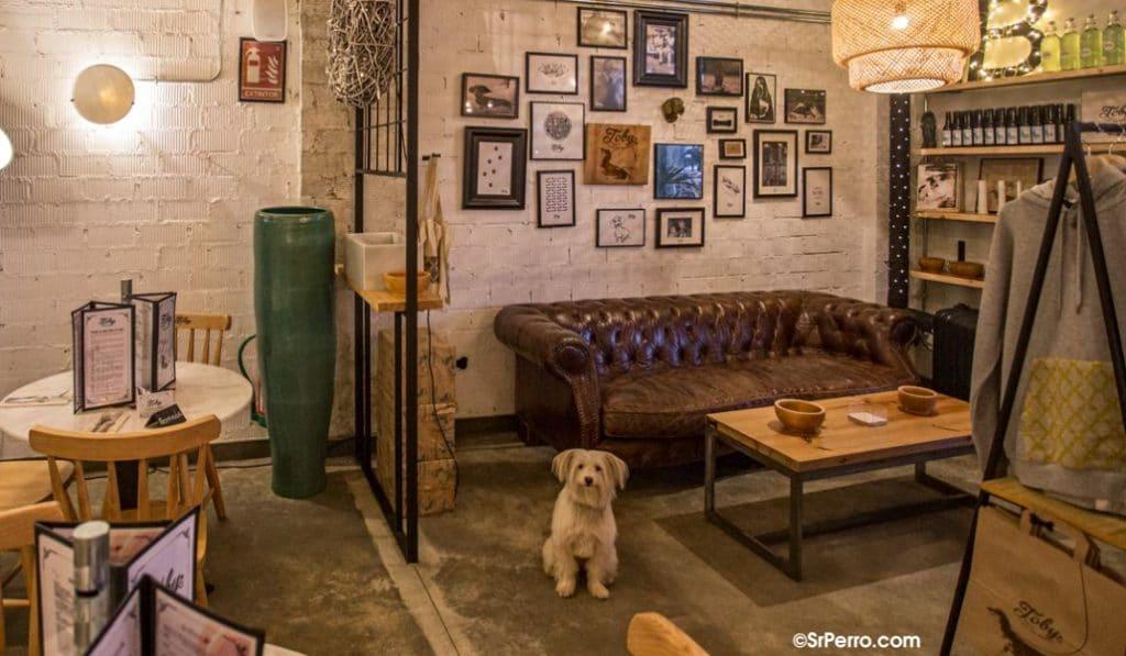 El restaurante 'pet-friendly' que debes probar con tu mascota