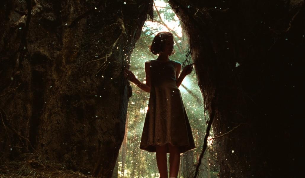 Vuelve a tu infancia con la nueva exposición de CaixaForum