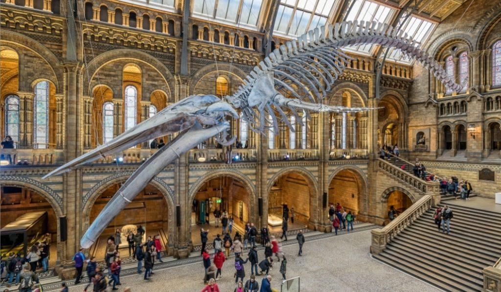 27 museos del mundo que puedes visitar desde casa
