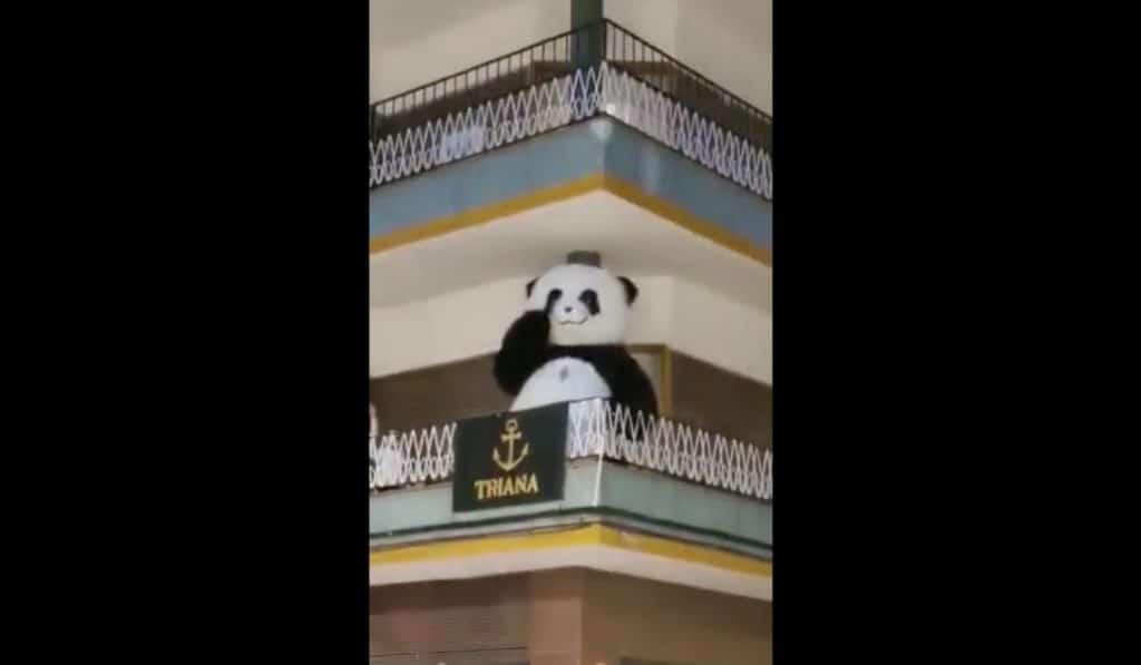Cuarentena en Sevilla: el oso panda de la Feria aparece bailando en un balcón
